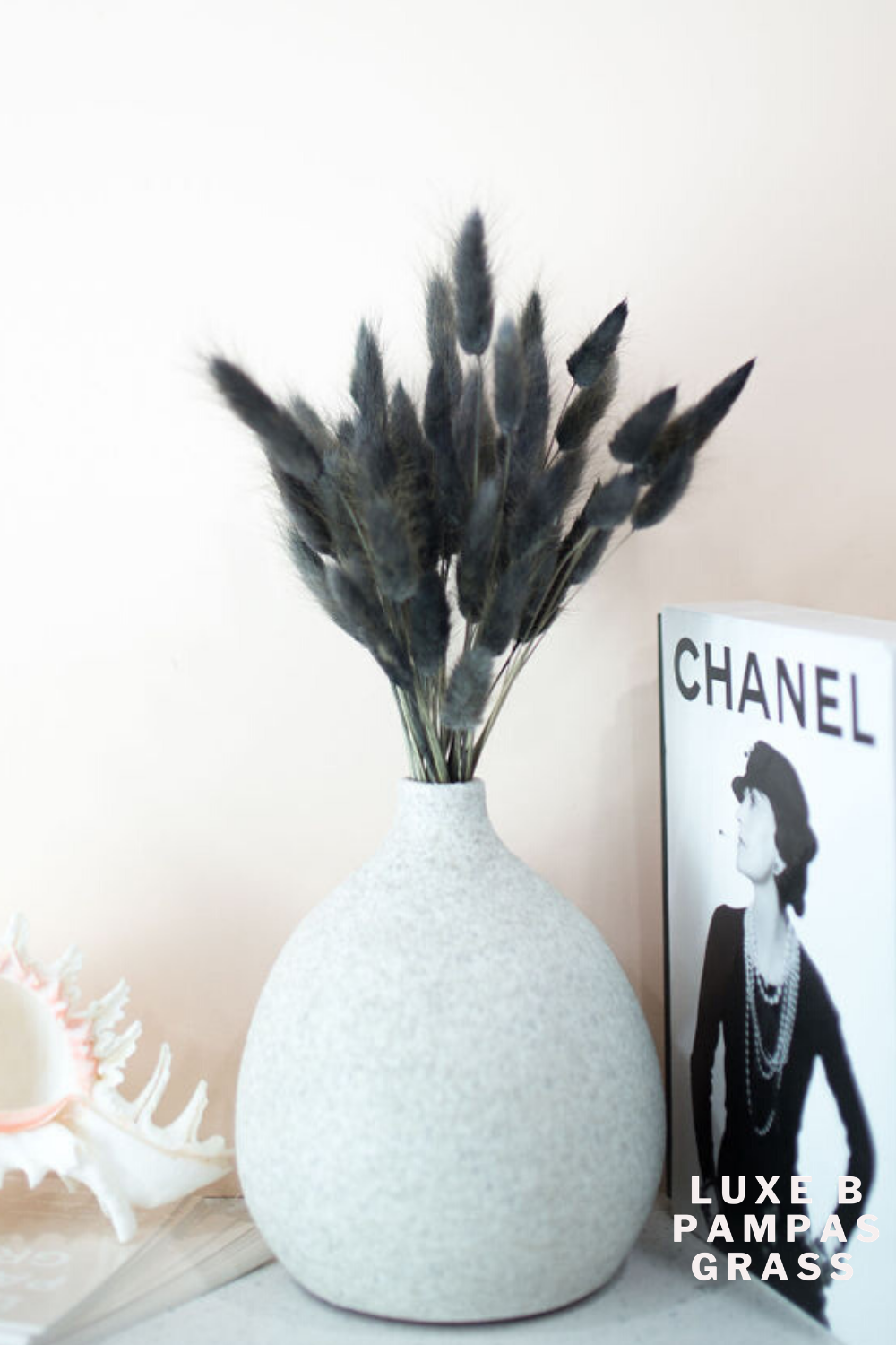 BUNNY TAILS Charcoal Black | Bunny tail, Dried floral, Pampas grass