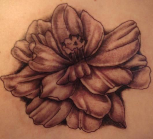 Cosmos Flower Tattoo By Gemeaux On Deviantart Birth Month Flowers Tattoos For Kids Flower Tattoos