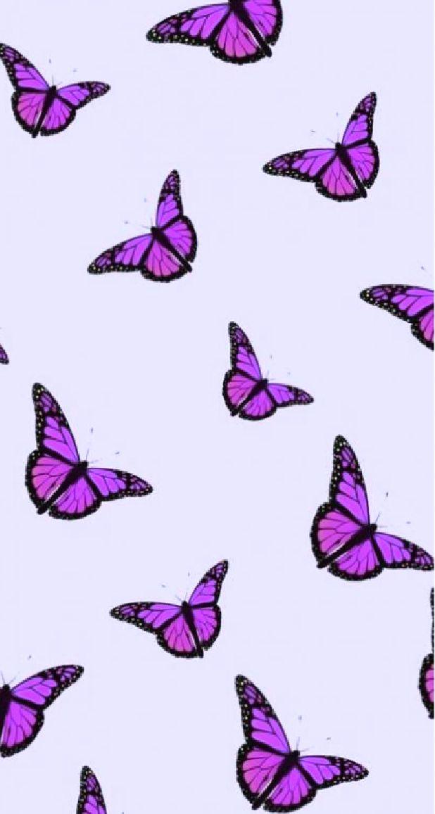 Purple Butterfly Wallpaper Aesthetic : purple, butterfly, wallpaper, aesthetic, Purple, Butterfly, Wallpaper, Iphone,, Wallpaper,