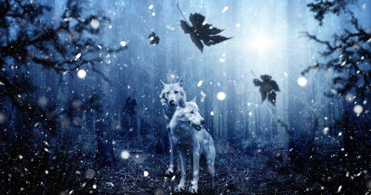 28+ Fantasy Winter 4k Wallpaper di 2020