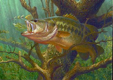 Acrylic artists in texas google search art acrylic for Bass fish painting