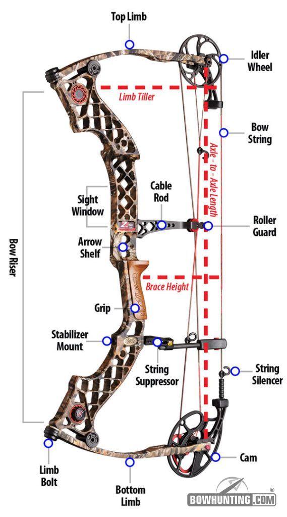 Parts Of A Compound Bow Archery Articles Pinterest Archery