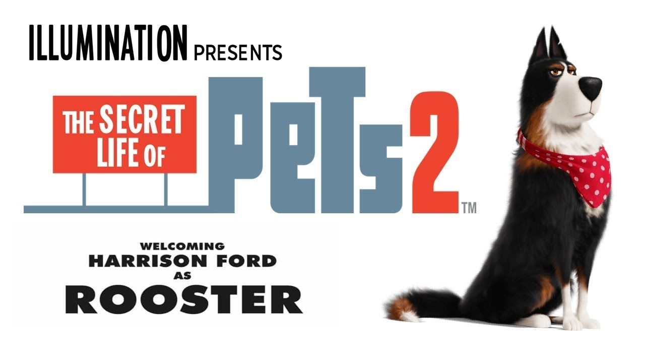Free Download The Secret Life Of Pets 2 2019 720p 850mb Secret Life Of Pets Secret Life Life