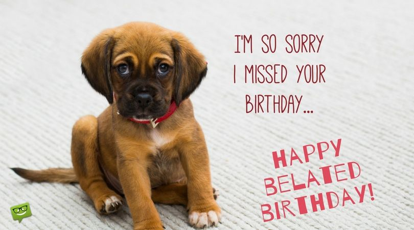 sorry i missed your birthday I'm Sorry I Forgot your Special Day | HBD   Belated | Pinterest  sorry i missed your birthday