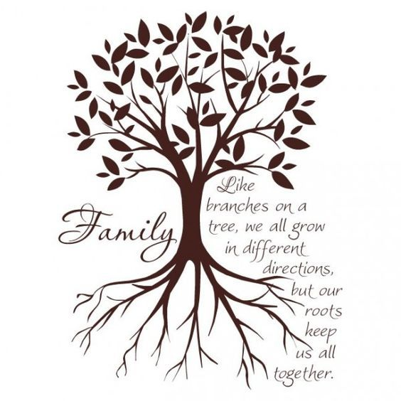 Family Like Branches On A Tree Quote Author Swfoodies