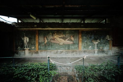Roman Frescoes from the House of Venus. Pompeii, Italy.