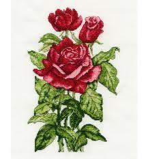 Trandafiri - kit