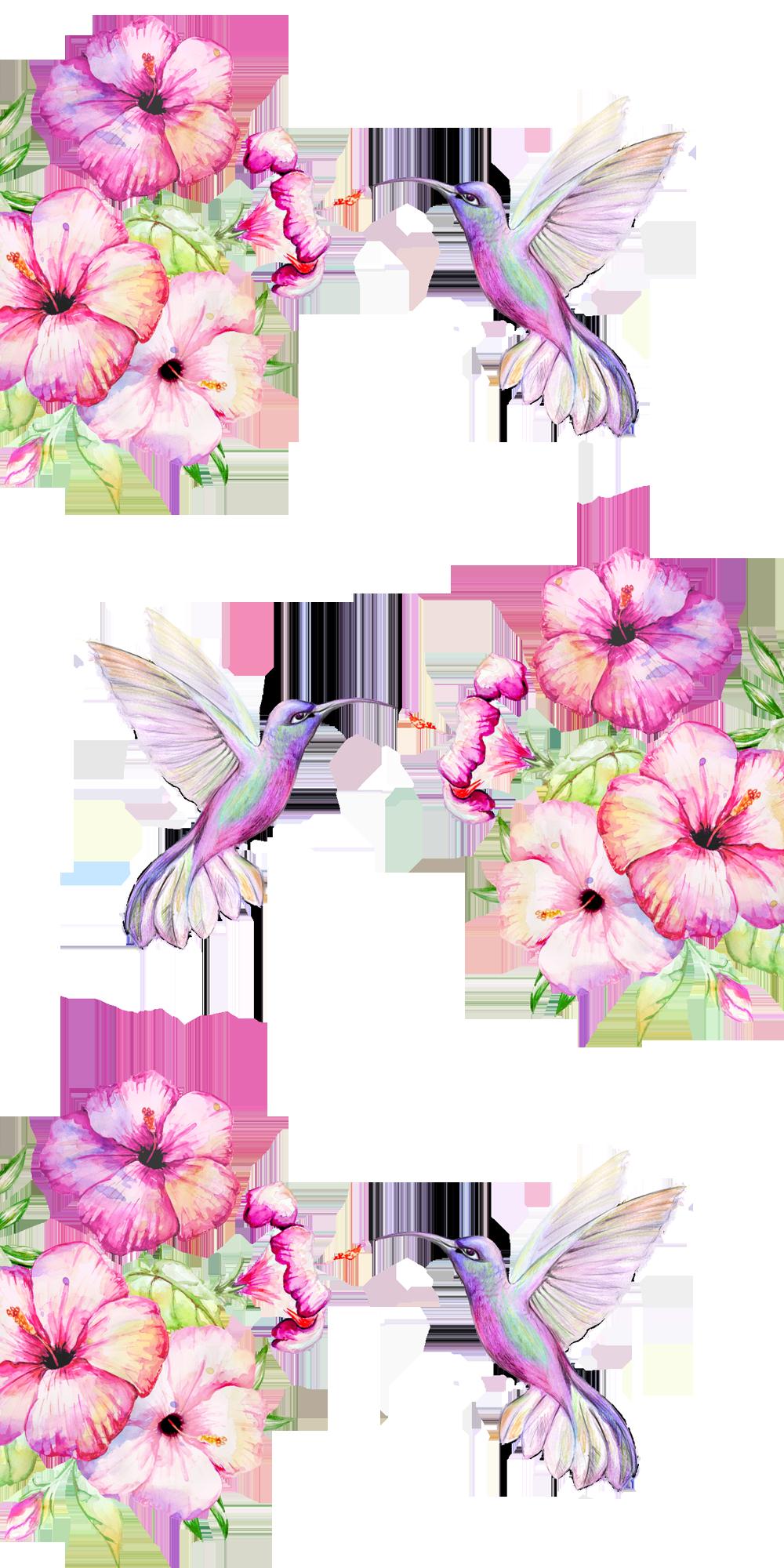 Iphone 8 Case Tropical Birds And Flowers By Karamfila Watercolor Hummingbird Bird Wallpaper Drawing Wallpaper
