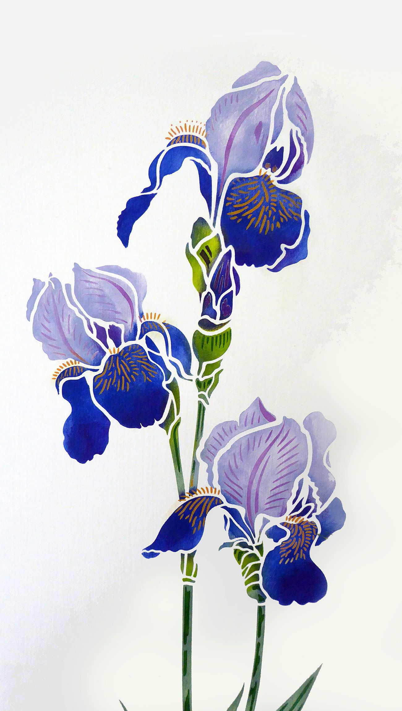 Exquisite Large 2 Sheet Flower Stencil The Large Agapanthus Stencil