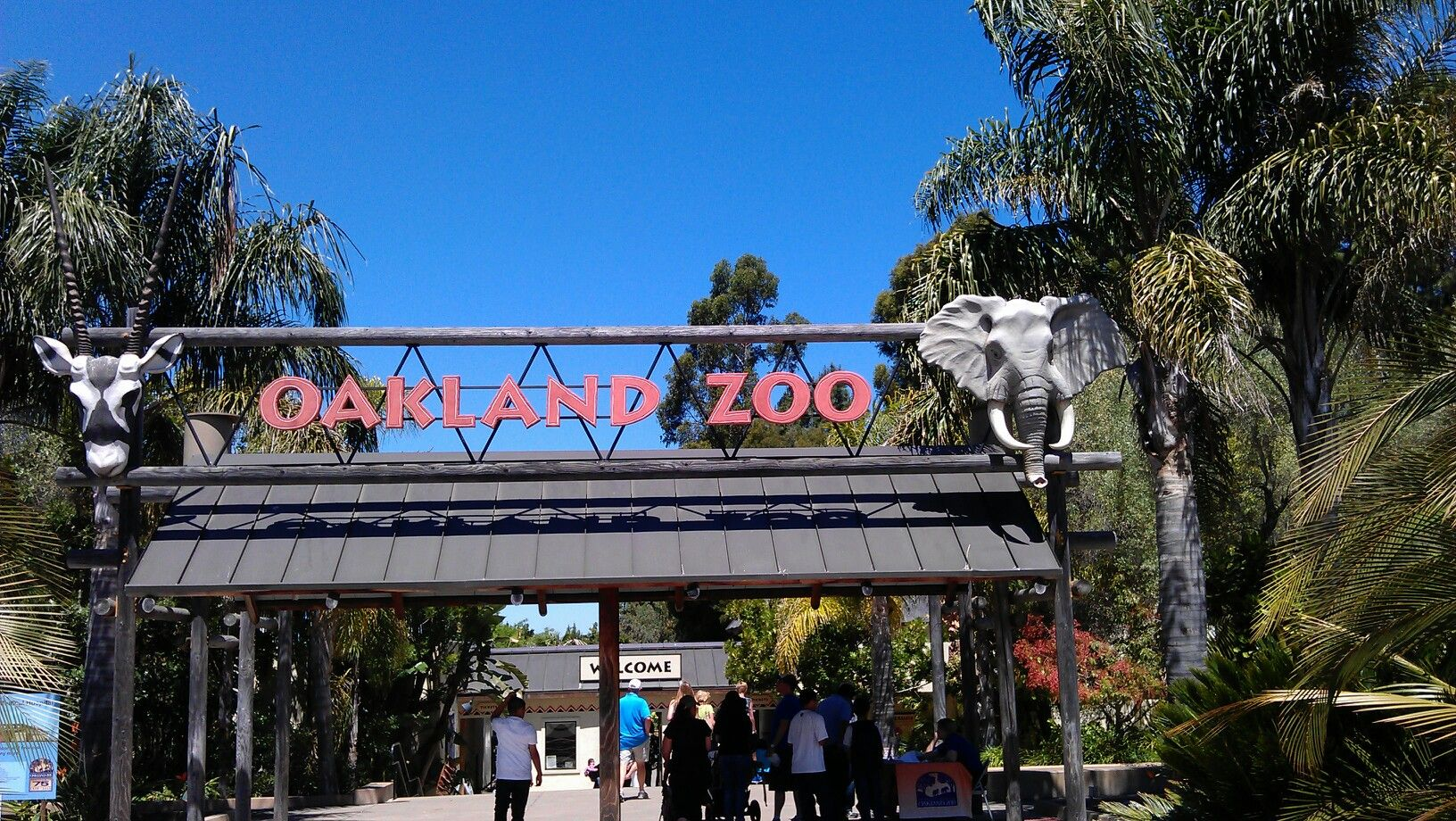 oakland zoos newest addition - HD 1632×920