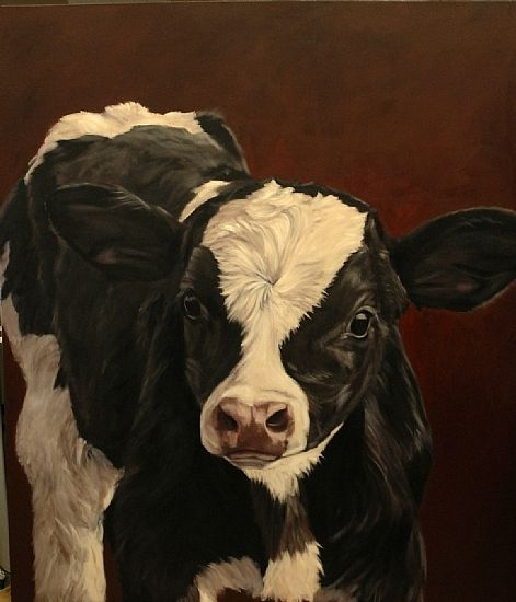 """Holstein Calf  """"First Look Around"""" by denise rich  ~ 84"""" x 72"""""""