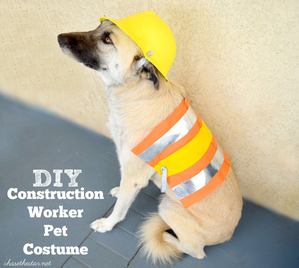 Diy Pet Costume Pet Costumes Diy Pet Costumes Dog Halloween