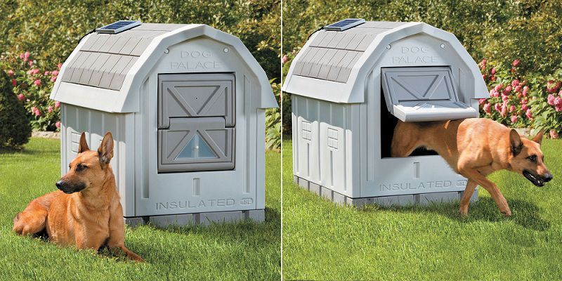 Best Insulated Dog House Heated Dog House Outdoor Winter Dog