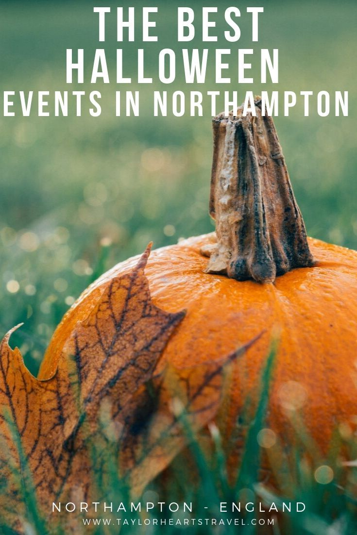 The Best Northampton Events 2020 for Families