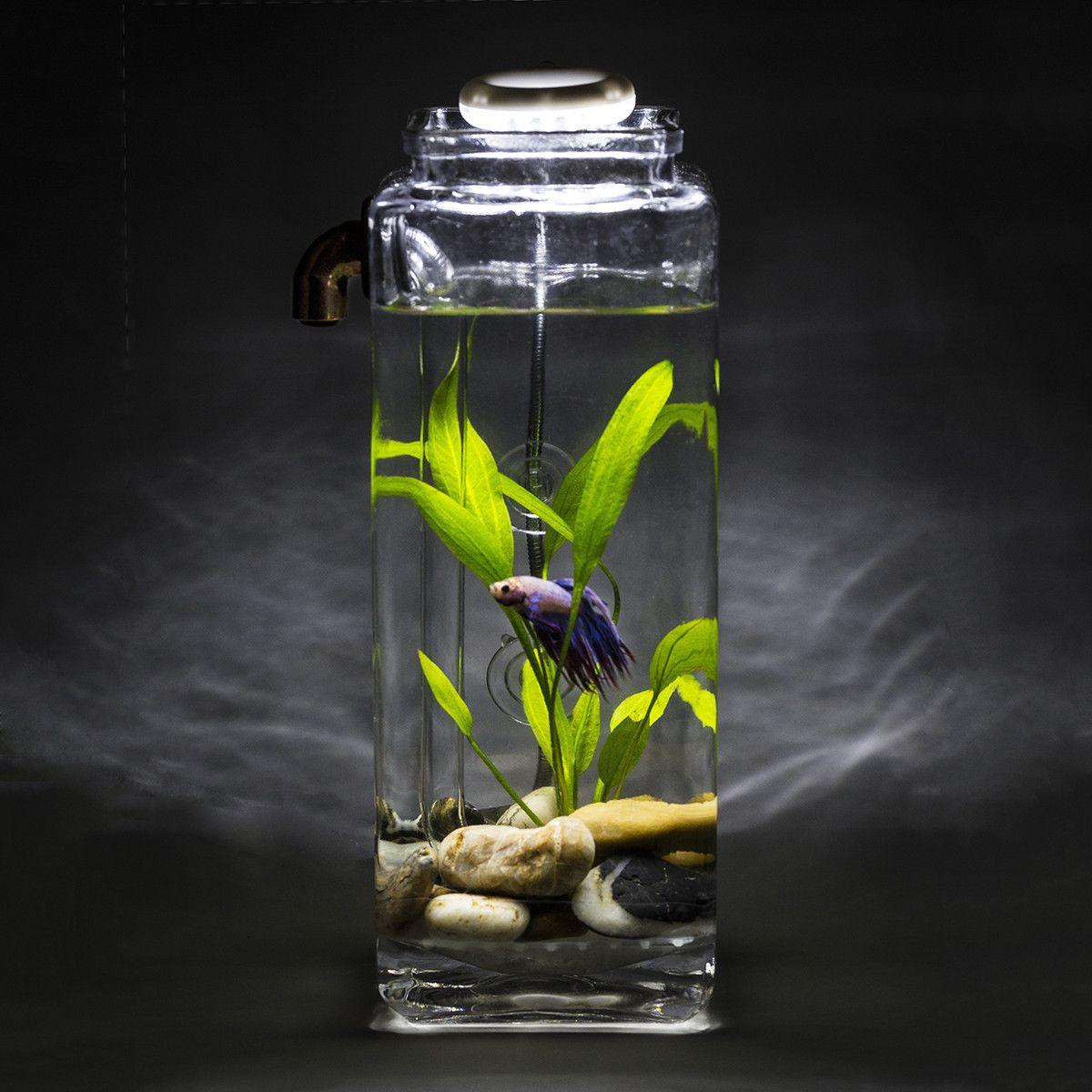 No clean aquarium betta fish tank - Betta Fish With Fancy Self Cleaning Aquarium And Led Light Man I Should So Get