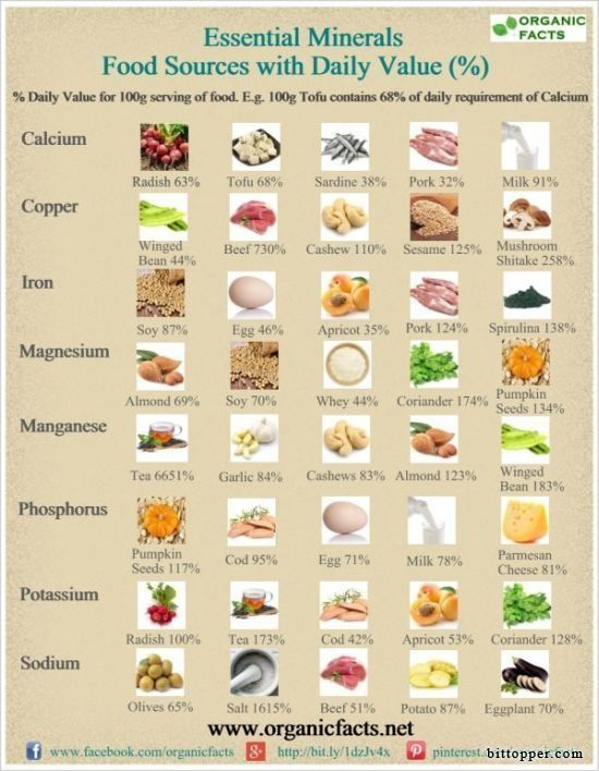 the important minerals for body growth The body uses the vitamins and minerals to facilitate physiologic al functions such as energy production, muscle contraction and tissue growth \ repair- essential parts of the muscle building process.