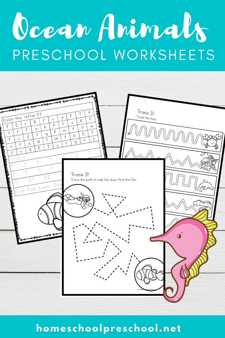 Ocean Animals Worksheets For Preschool Ocean Animals Preschool Animal Worksheets Ocean Theme Preschool [ 1102 x 735 Pixel ]