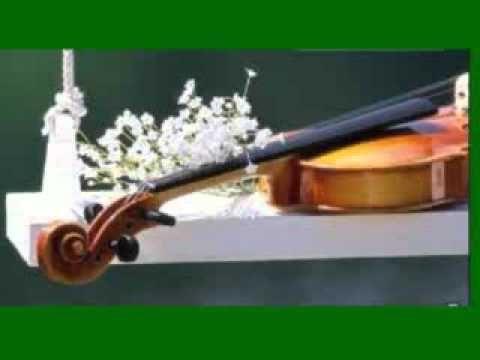 Helmut Zacharias - Violines Españoles.wmv