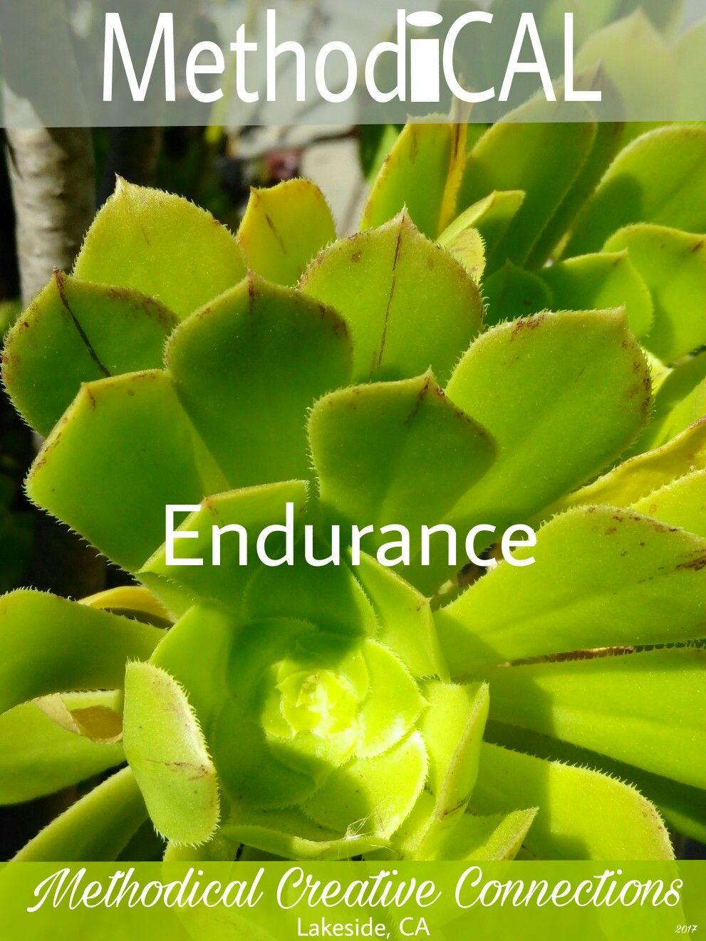 Endurance #Method_iCAL #endurance