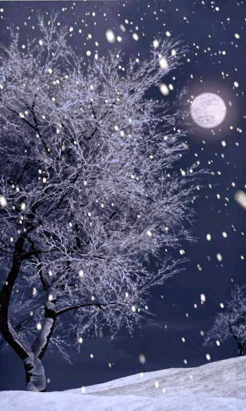Full moon during a Winter snow - I see a skull in the tree!