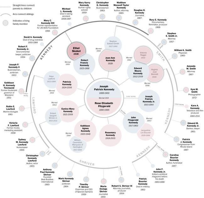 Kennedy family tree diagram   Path Visualization   Pinterest ...