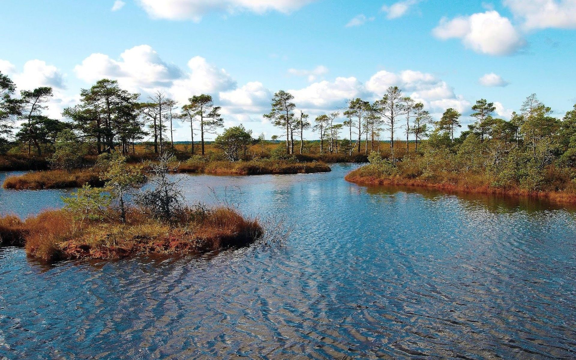 The one of five nature reservs in estonia the lahemaa national park