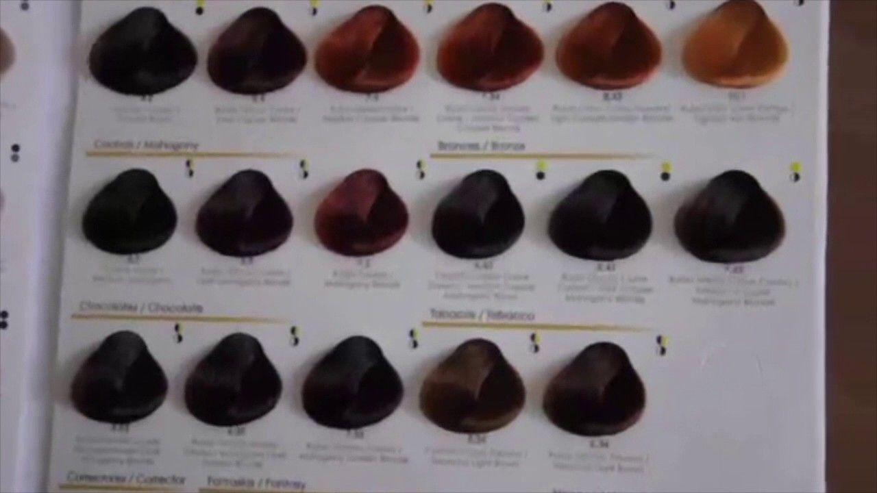Guia De Color Para Cabello Como Recomendar El Tinte Adecuado