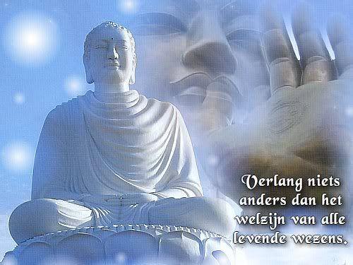 Boeddhistische Citaten Over Afscheid : Boeddhistische spreuken google zoeken en