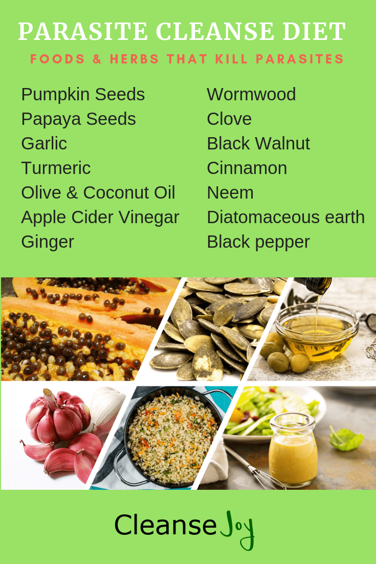 Parasite Cleanse Diet : Best Herbs & Foods That Kill Parasites