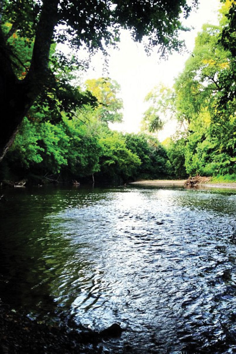 Here Are 17 Virginia Swimming Holes That Will Make Your