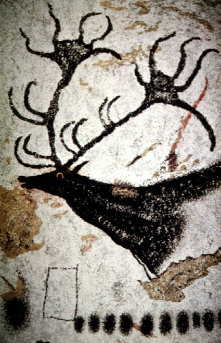 Bear, Chauvet cave painting, ca. 30,000 - 28,000 BCE ... |Lascaux Cave Paintings Bear