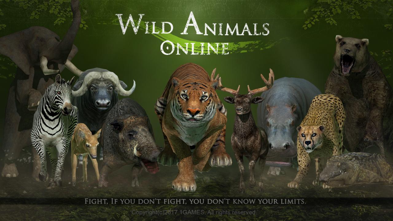 Wild Animals Online Wild, Animals, Online Animals