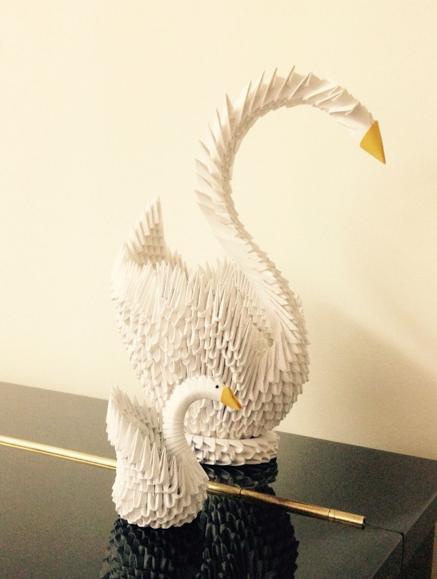 Cigni origami 3D
