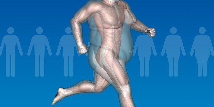 calcolare il grasso corporeo con bmio