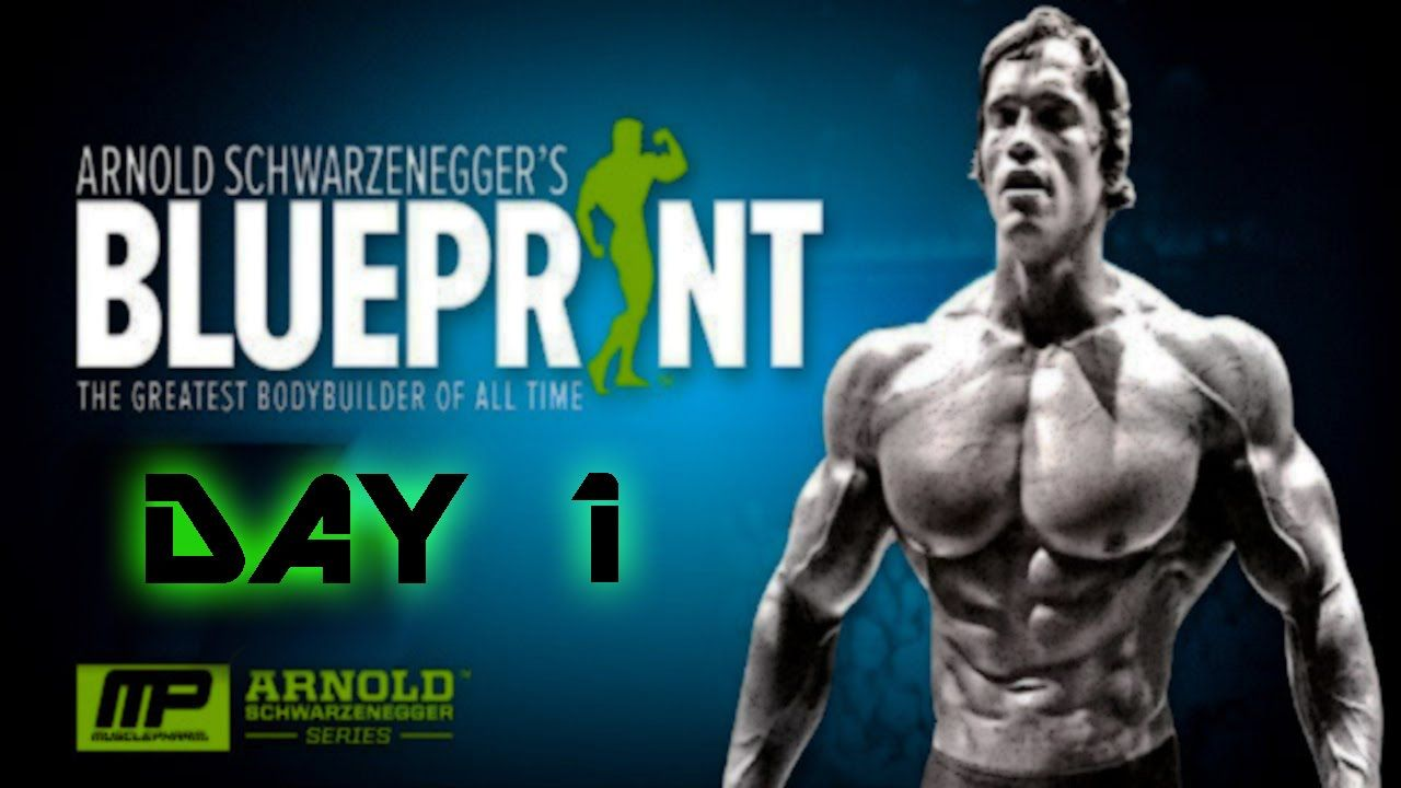 Arnold schwarzeneggers blueprint to cut arnold schwarzenegger arnold schwarzeneggers blueprint to cut arnold schwarzenegger bodybuilder and workout malvernweather Gallery