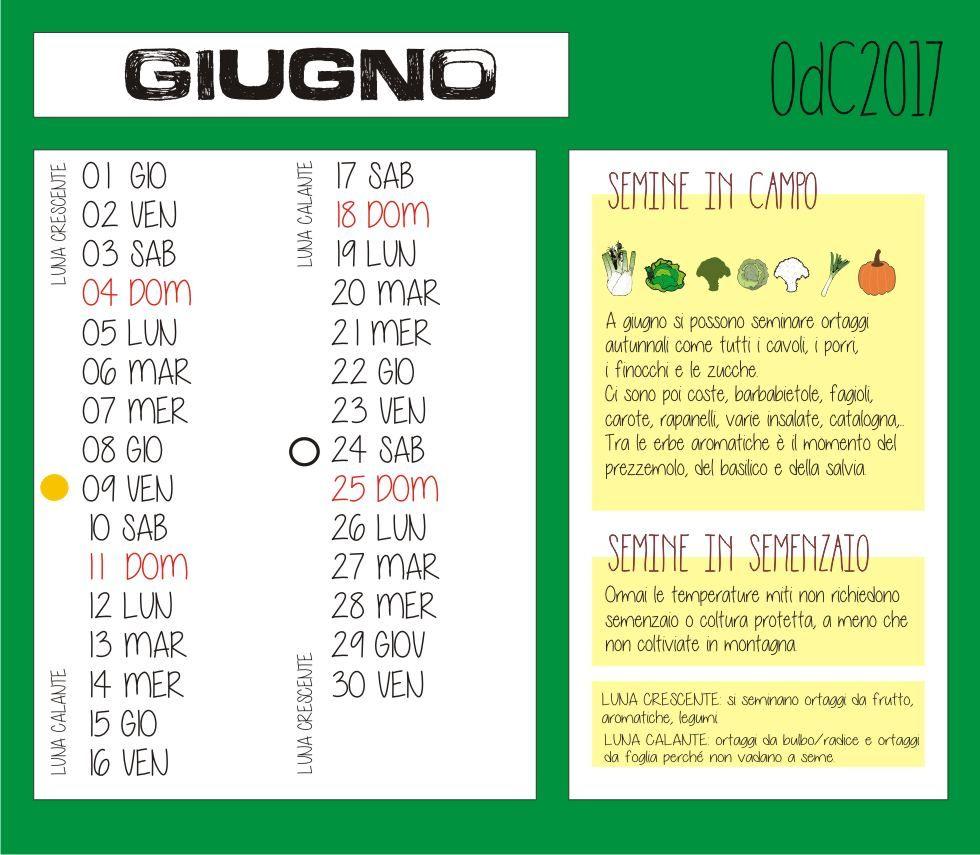 Calendario Trapianti Orto Pdf.Calendario Orto Di Giugno 2019 Fasi Lunari Lavori Semine