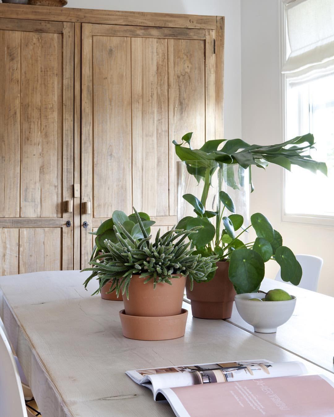 Enjoy the weekend everyone ... #weekend #homesweethome #organichome #greenplants #livingwithplants #trend #scandinaviandesign #scandinavianliving #bobedrenorge @bobedrenorge @2athomeblogg