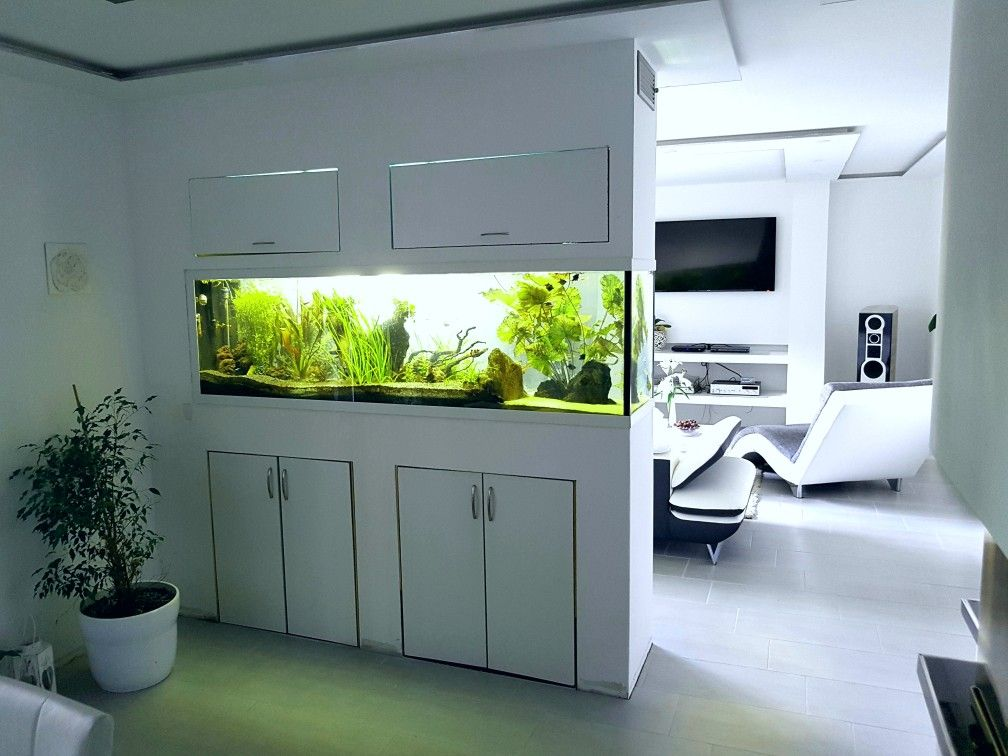 raumteiler aquarium aquarium raumteiler pinterest. Black Bedroom Furniture Sets. Home Design Ideas