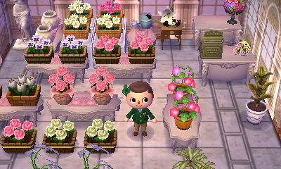 Animal Crossing New Leaf How To Get The Kitchen Island
