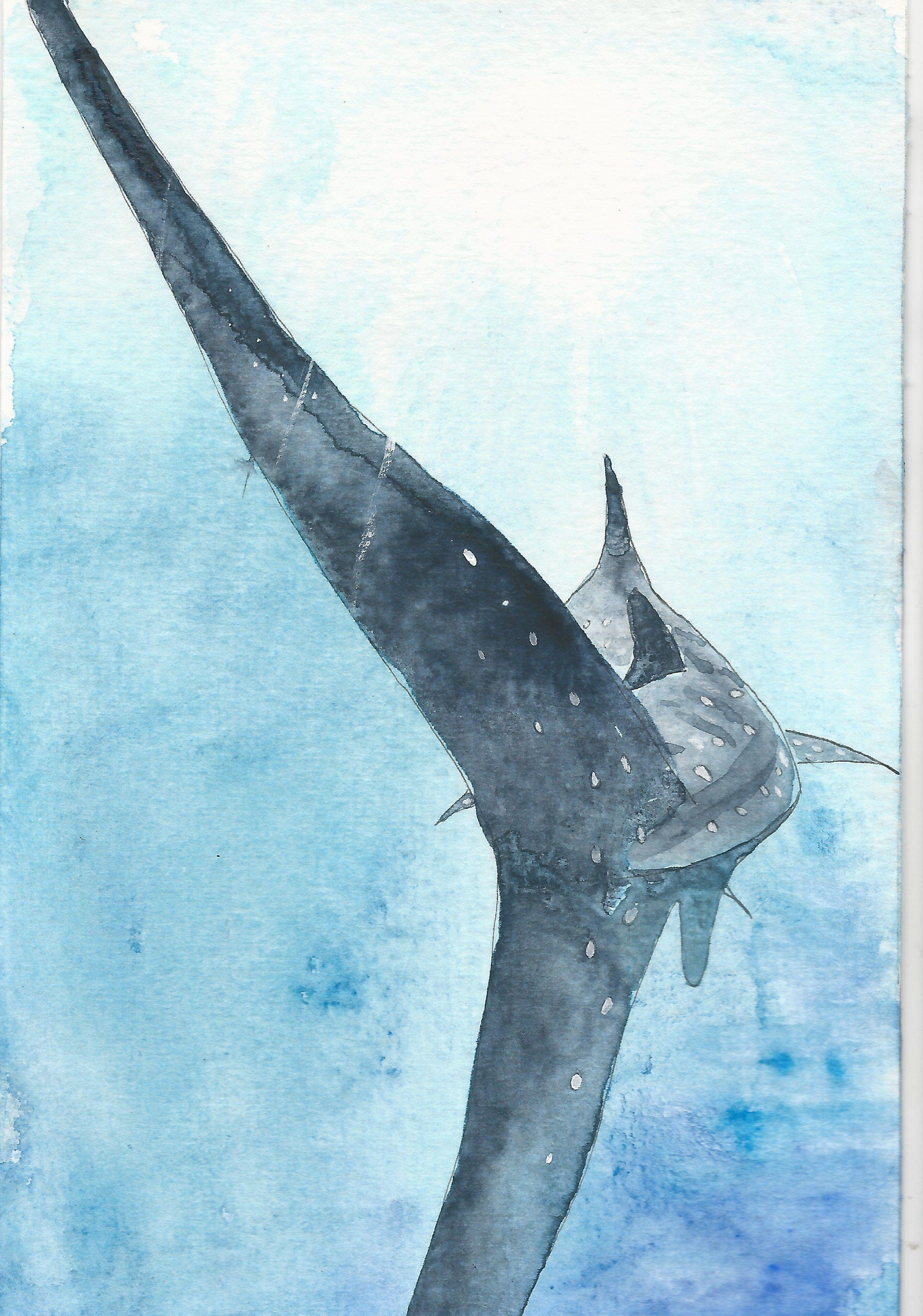 Hammerhead Shark Abstract Watercolor Painting Art Print by Artist DJ Rogers