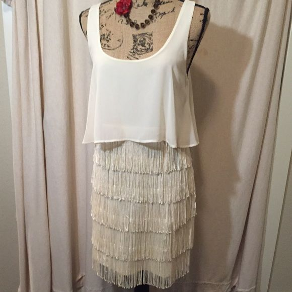 American Eagle Fringe Dress Beautiful Ivory Fringe Dress from American Eagle. Excellent Condition. Summer Ready Size 10. Never Been Worn. Impulse buy at retail  because I love the fringe so much but it never made it out of the closet. No fraying and and fringe is all intact. No trades. American Eagle Outfitters Dresses Mini