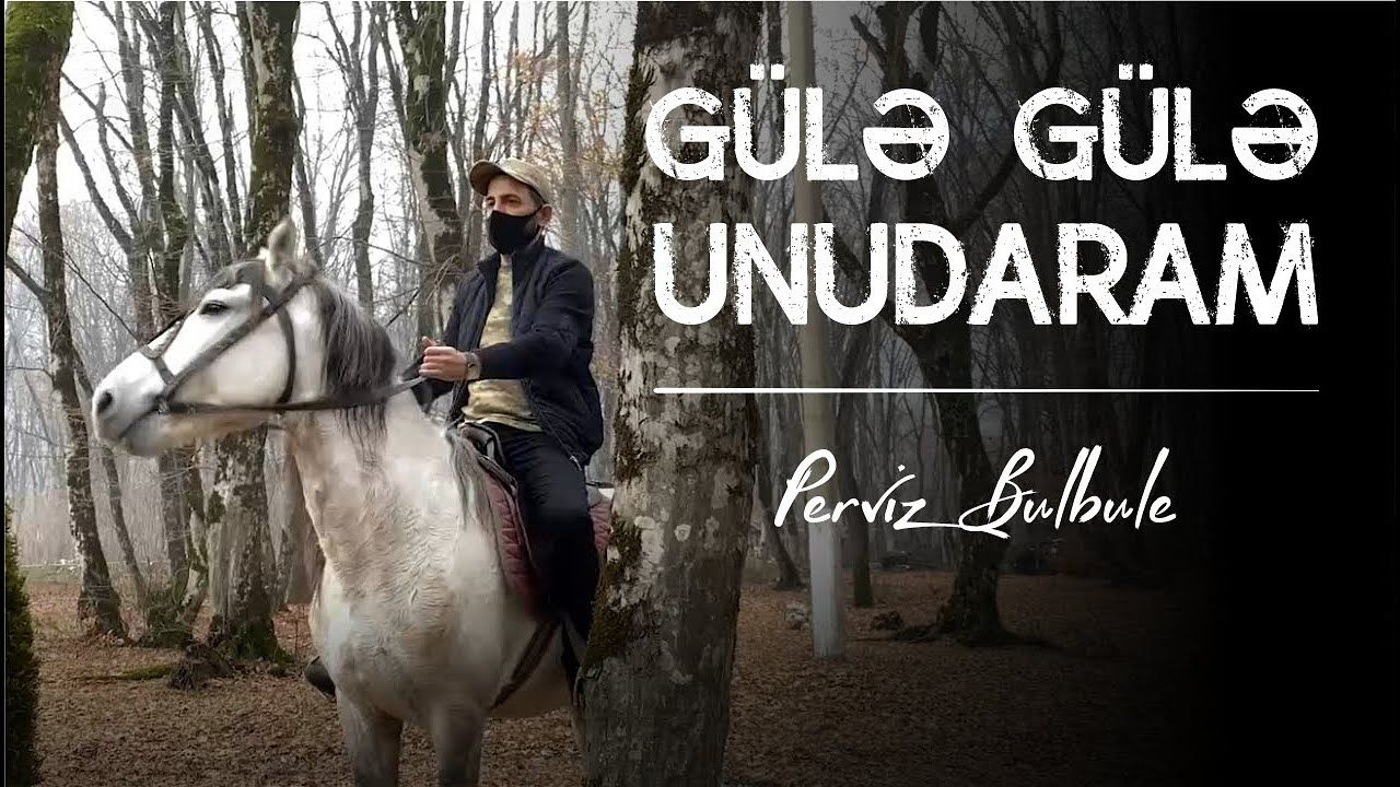 Perviz Bulbule Gulə Gulə Unudaram Mp3 Yukle In 2021 Mp3 Horses Animals