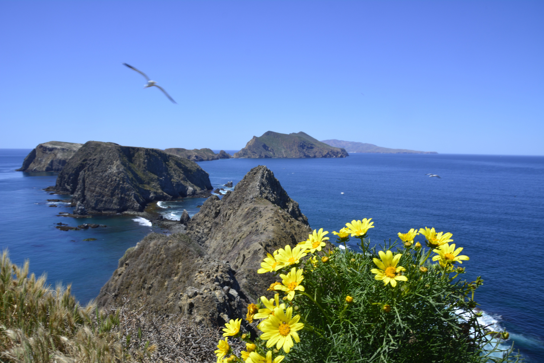 Inspiration Point, Anacapa Island, Channel Islands