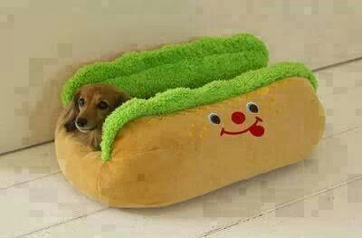 I want that for my doggies