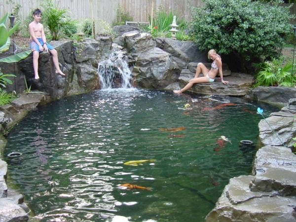 Koi pond swimming pool can you swim with the koi fish for Garden pond installers