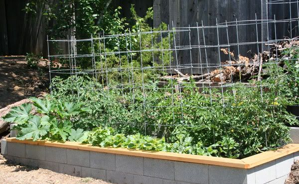Cinder Block Raised Garden Bed Topped With Cedar Maybe Stencil