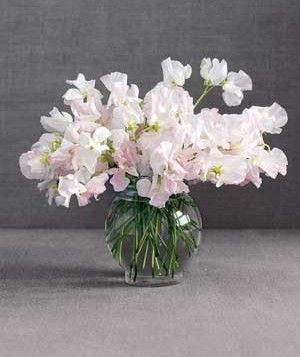 How can you go wrong when your flower arrangement smells as heavenly flowers mightylinksfo Image collections