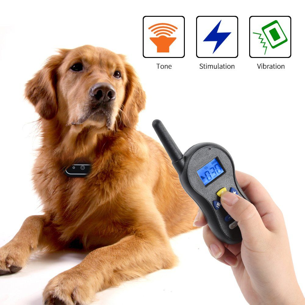 Electric dog training collarrechargeable and waterproof
