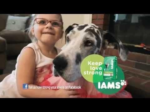 Iams Dog Food Commercial Keep Love Strong Pretty Tough Dog