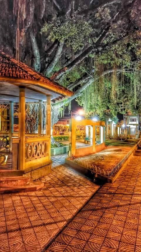 Barão de Monte Alto Minas Gerais fonte: i.pinimg.com